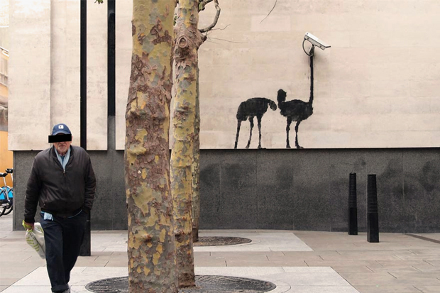 banksy-at-the-national-gallery-london-1