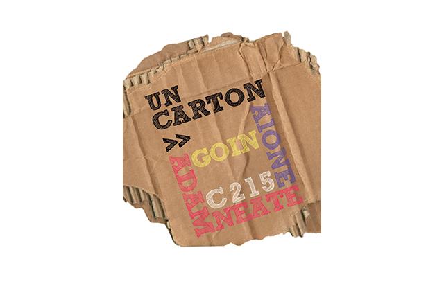 carton1